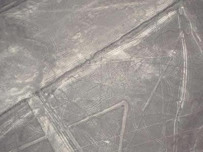 ナスカの地上絵の画像 p1_1